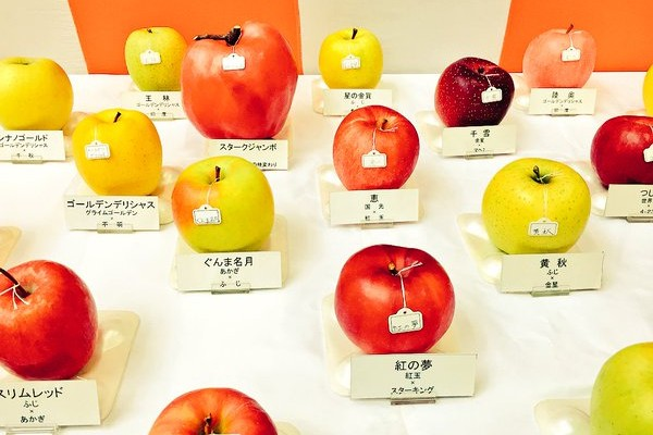 弘前市りんご品評会