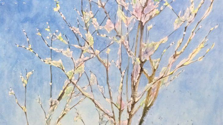 弘前の芸術を守るHirosaki Art Seed Projectの挑戦